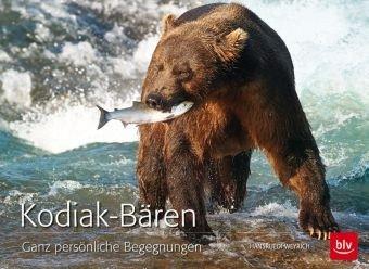 Kodiak-Bären exklusiv